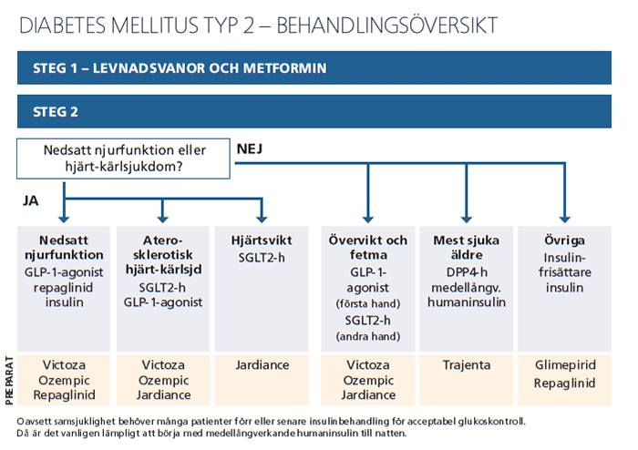 Diabetes mellitus typ 2 - behandlingsöversikt